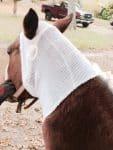 PET-NET Horse Head over Ears