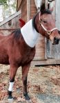 PET-NET Horse Neck and Leg